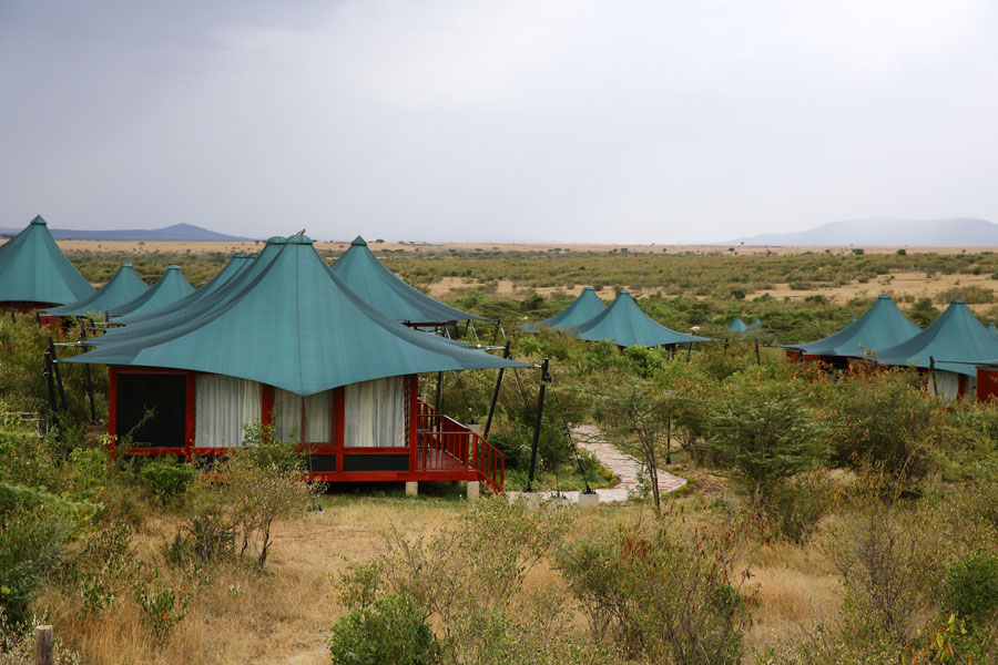 Image result for aa lodge mara pictures